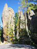 Black Hills Tours - Custer State Park